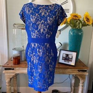 NWT! Cobalt blue lace dress with nude backing!